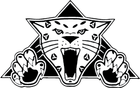 Windsor High School Jaguar